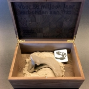 De botten van T'rex Trix in een kistje van Goeters