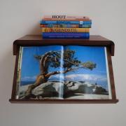wand-boekenkast