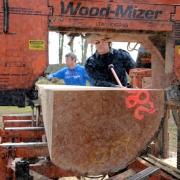 pepijn-zaagt-hollands-hout
