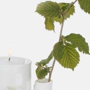 roots-marlies-crooijmans-gedenkgoed-bij-goeters