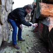 Goed en mooi massief Hollands hout op voorraad bij Goeters